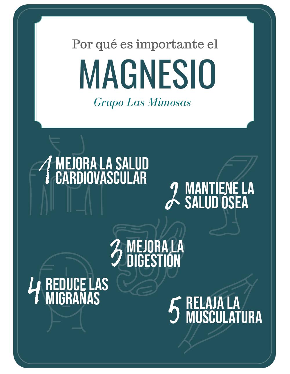 Infografía con las 5 cosas por las que el magnesio es imprescindible para el organismo